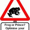 frog_or_prince